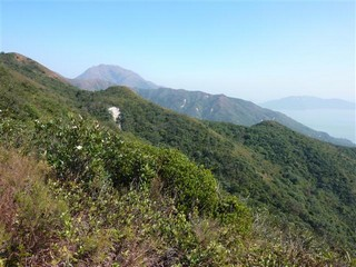 Hong Kong / Lantau Island / The Dog`s Third Tooth