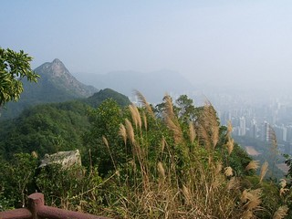 Hong Kong / New Territories / Lion Rock Country Park