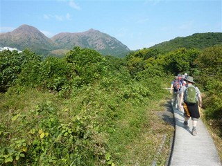 Hong Kong / New Territories / Ma On Shan & The Hunch Backs