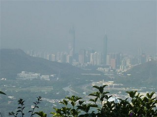 Hong Kong / New Territories / Razorback