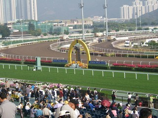 Hong Kong / New Territories / Sha Tin Racecourse