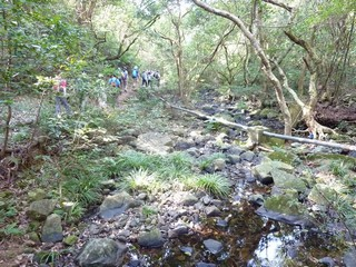 Hong Kong / New Territories / Vanished Upland Villages of SW Tai Mo Shan