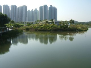 Hong Kong / New Territories / Wetland Park