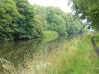 England / Canal Walks / The Chasewater Circle