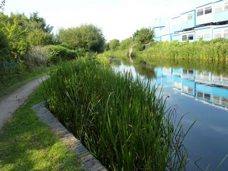 England / Canal Walks / Gas Street Basin to Catshill Junction