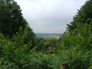 England / London Loop / Petts Wood to Coombe Lane Station