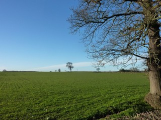 England / Staffordshire / Abbots Bromley and Bagots Park