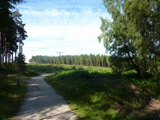 England / Staffordshire / Cannock Chase Heritage Trail