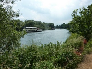 England / The Thames Path / Marlow to Windsor