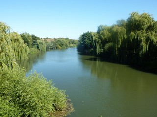 England / The Thames Path / Oxford to Culham