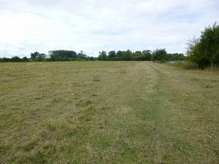England / The Thames Path / Culham to Cholsey